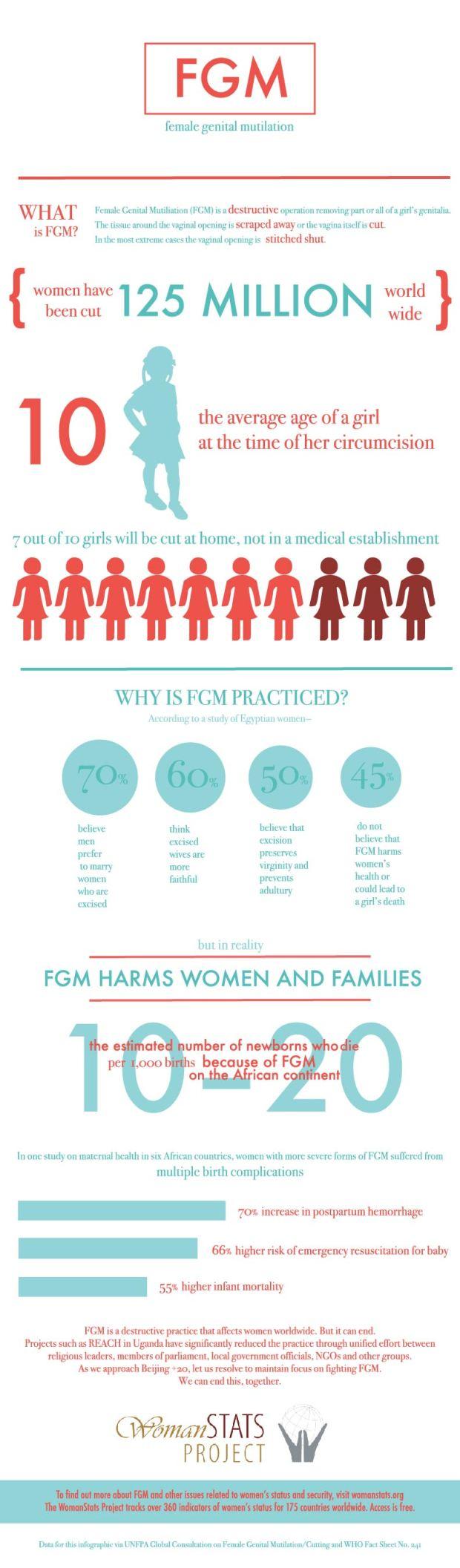 FGM Infographic 2014