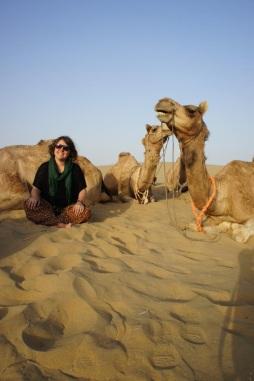 camel-photo